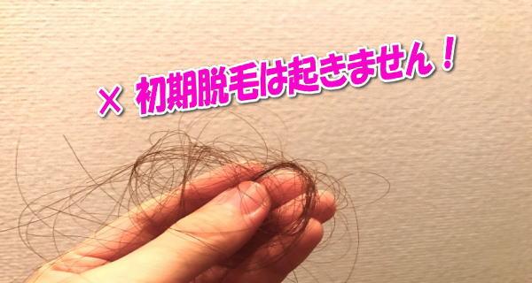 初期脱毛が起きた髪の毛